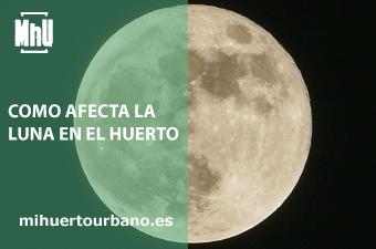 Es la luna llena